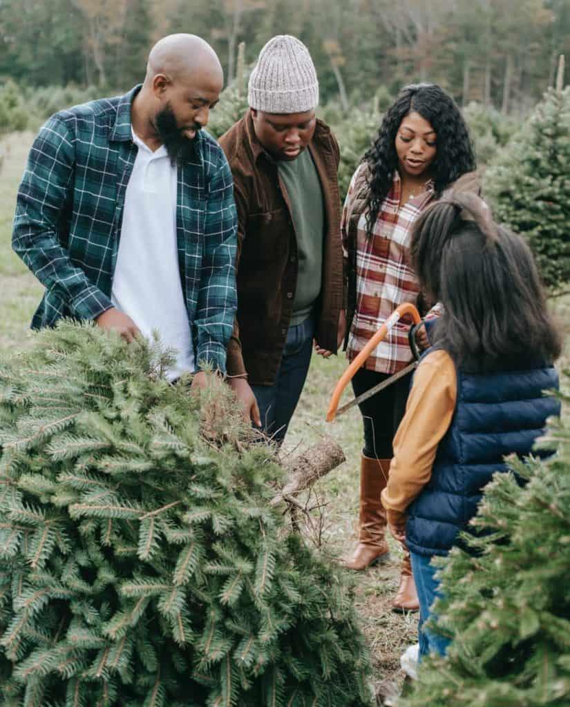 familie-wählt-christbaum-aus